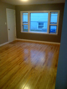 Newly Renovated 1 bedroom - centrally located.  Avail now