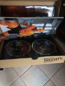 Insanity Work Out CD's