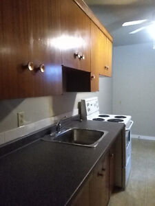 One bedroom apartment for rent in Oliver Area-Downtown
