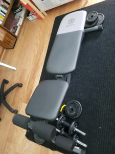 Golds Gym Weights bench | Various lamps & bookshelves