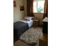 Single Bed on a double sized Bedroom. Available 17th September