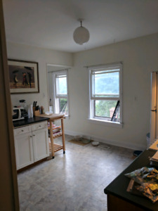 2 br pet friendly apt. near Hydrostone on Agricola - avail oct 1