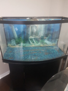 30 Gallon Fish Tank and stand for sale.