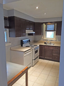 Newly renovated 2 bedroom basement apartment $1100 utilities inc
