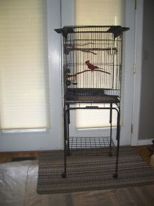 Profesional Bird Cage with stand Peterborough Peterborough Area image 1
