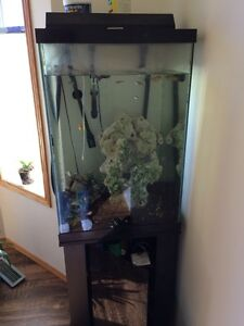 Large Fish Tank (aprox 54 gallon)with fish