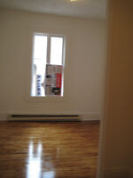 jardin,2 bedroom, lower 2plx pST CHARLES,griffintown,atwater