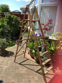 Old decorators ladders from £15