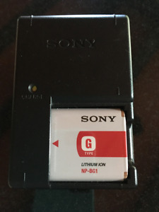 Sony G Lithium Ion Battery and Charger