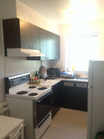COTE ST catherine metro ---large New renovated  3-1/2 apartment