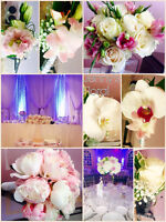 GORGEOUS WEDDING DECORATION FOR 150 PEOPLE ONLY $1100!