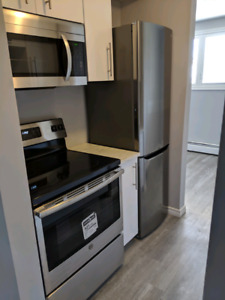Large Renovated 2 bed apt Niagara Falls