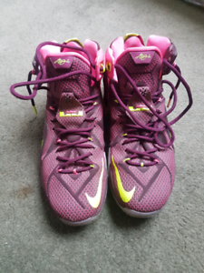 Lebron 12 double helix Basketball shoes
