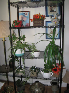 5 tier metal shelving unit in excellent condition