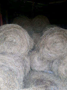 4x5 soft core hay bales