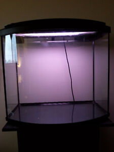 20gal Curved Tank with Stand, etc.- NEW PRICE Peterborough Peterborough Area image 5