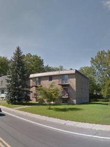 Logement-appartement 4 1/2 a louer limite St -Hilaire -Otterbur-