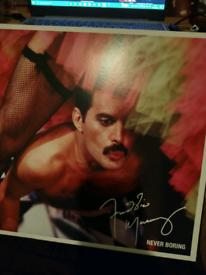 Freddie Mercury vinyl album