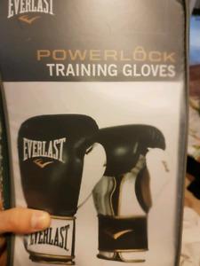 16 oz Everlast boxing gloves.