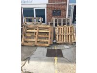 Free pallets for firewood collection Portsmouth