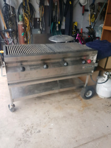 "Silver giant 48"" stainless steel BBQ"