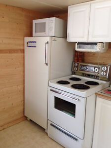 Cabin and lot for sale in Old Campground at Clear Lake, MB Regina Regina Area image 3