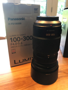 Panasonic Lumix G 100-300mm F/4.0-5.6  OIS