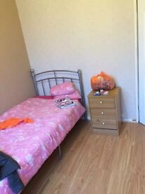 A nice single room to let