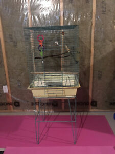 Large Bird Cage and Carrier