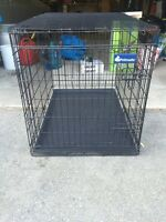Cage Chien animaux chat