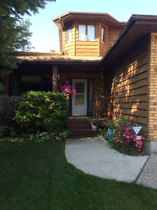 Beautiful 2 storey family home - great location