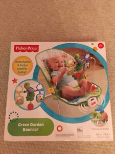 Baby Bouncy Chair Brand New Fisher Price (still in box)