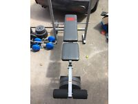 Pro Power bench bundled with weights and other fitness equipment