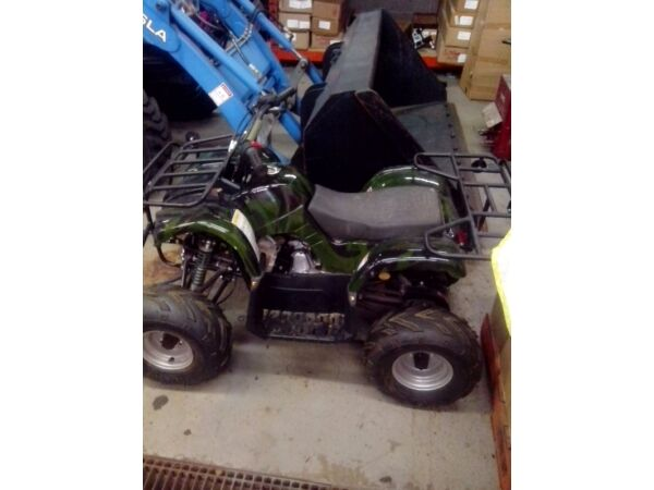 Used 2013 Taotao 110 kids atv used twice