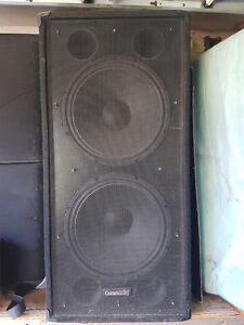 "Community 2x15"" sub speakers - XLT55"