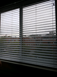 """White faux wood blinds 2"""""""