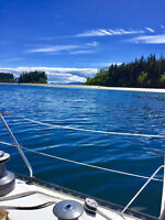 Discover Lake of the Woods. On a sailboat