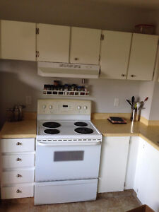 LJ COUNTERTOPS  update your old countertops. remove and install