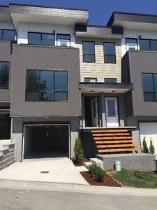 Brand New Luxury Townhouse (Waterleaf Place)