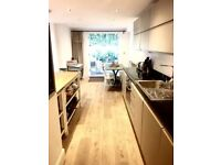 STYLISH 1 OR 2 BED FLAT, NEWLY CONVERTED VICTORIAN FLAT, GARDEN, CAMBERWELL / BRIXTON.