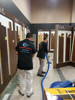 Mold Removal  Mold Remediation in Toronto & GTA