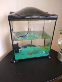 Fish tank with filter lid stones accessories