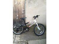 Mountain Probike bike