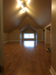 Large Attic Loft Available Jan. 1 for Student/Working Female