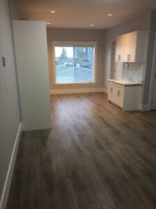 1 Bedroom Suite Available for Rent in Panorama Ridge