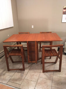 Danish Mid-Century modern drop leaf table and chairs