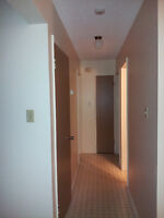 1 room available in a 2 Bedroom Apartment - close to NAIT