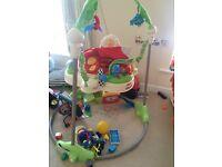 Baby toy fisherprice rainforest jumperoo
