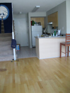 Bright and Clean Loft for sublet