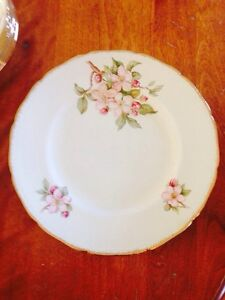 "Vintage Royal Swan Blossomtime China 10"" Dinner Plates"